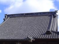 DSC090115円福寺.JPG